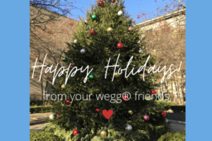 Happy Holidays from wegg®